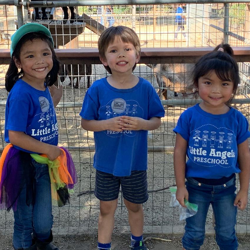 Preschool petting zoo field trip 2019